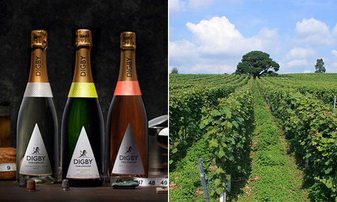 English Wine Week: Five of the best English wines