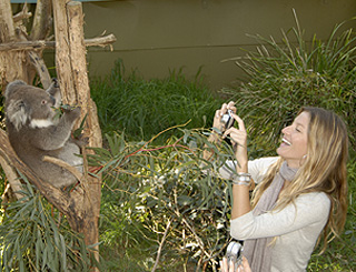 Gisele makes a new friend Down Under