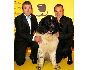 Graham Norton helps fete canine heroes