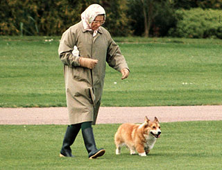 Queen decides to stop breeding corgis