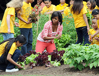 Michelle Obama harvests fruits of organic garden
