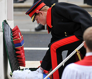 Britain's princes poignantly lead Remembrance tributes