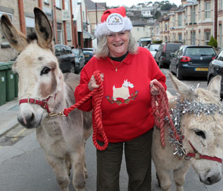 Ann Widdecombe steps out to save the donkeys