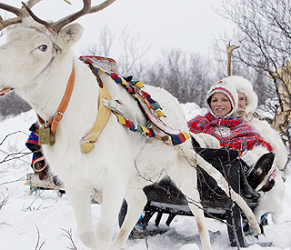 Prince Albert and Charlene take sleigh ride in Lapland