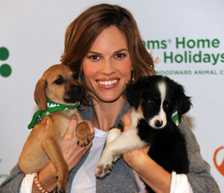 Hilary Swank saves stray dogs in Hungary