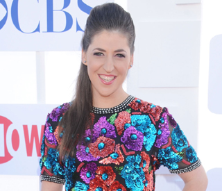 'Big Bang' star Mayim Bialik positive after car crash