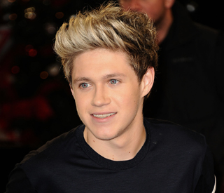 Niall Horan passes driving test on first go
