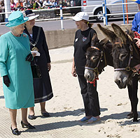 queen, weymouth, sand castle, donkeys, beach, sand, Prince Phillip, sculpted, punch and judy, puppets, royals