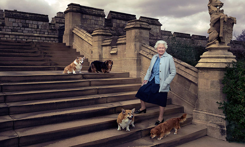 The Queen's beloved pet corgi Holly has died