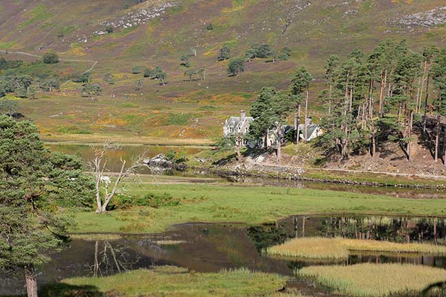 Glen-Affric-estate