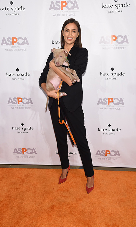 October 15: Puppy love! Irina Shayk hosted the 2015 ASPCA Young Friends Benefit in New York City. 