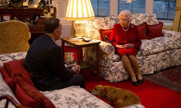 Queen Elizabeth and a canine pal met with the Prime Minister of New Zealand, John Key, in a cozy room at Windsor Castle. <bR>
