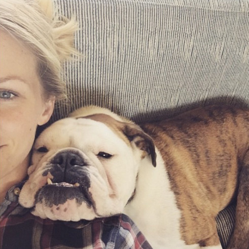 Smile for the camera. Mom-to-be Brooklyn Decker often proudly shows off her two adorable bulldogs on her social media pages.