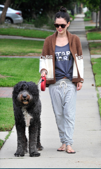 November 30: The force is with your walk! Rachel Bilson walked her dog while wearing a Rock & Republic Star Wars Chrome sweatshirt from Kohl's in Los Angeles. 