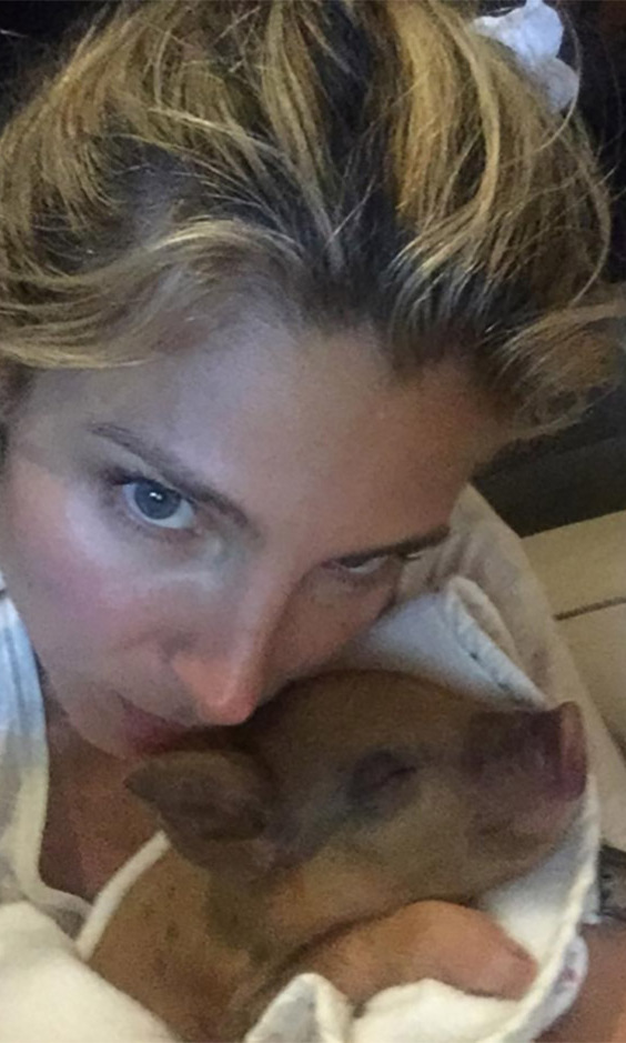 Elsa Patasky introduced the world to the newest addition of the Hemsworth clan, Tina the pig. 