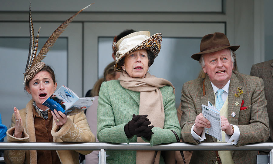 The anticipation seems almost too much for Princess Anne and her friends, who watch the Cheltenham horse racing festival from the royal box.