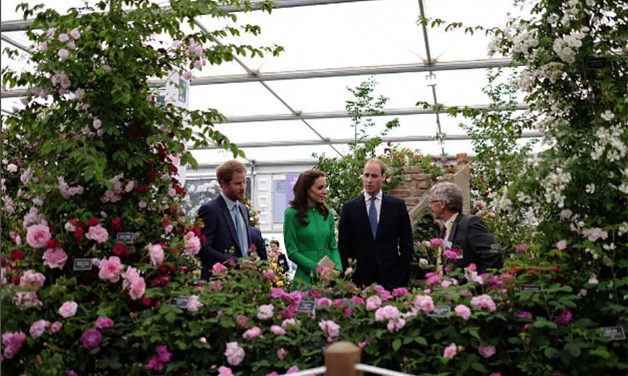 A royal milestone! Prince Harry, Prince William and Kate Middleton kicked off the summer social season at the Chelsea Flower Show. Monday's event marks the first time the the Duke and Duchess have visited as a couple. 
