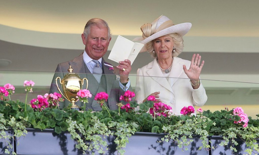 Prince Charles and Duchess Camilla checked out the scene below.