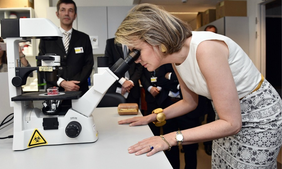 Queen Mathilde of Belgium got scientific and took a peek through a microscope during her visit to the Centre for Human Genetics of the Catholic University of Leuven.
