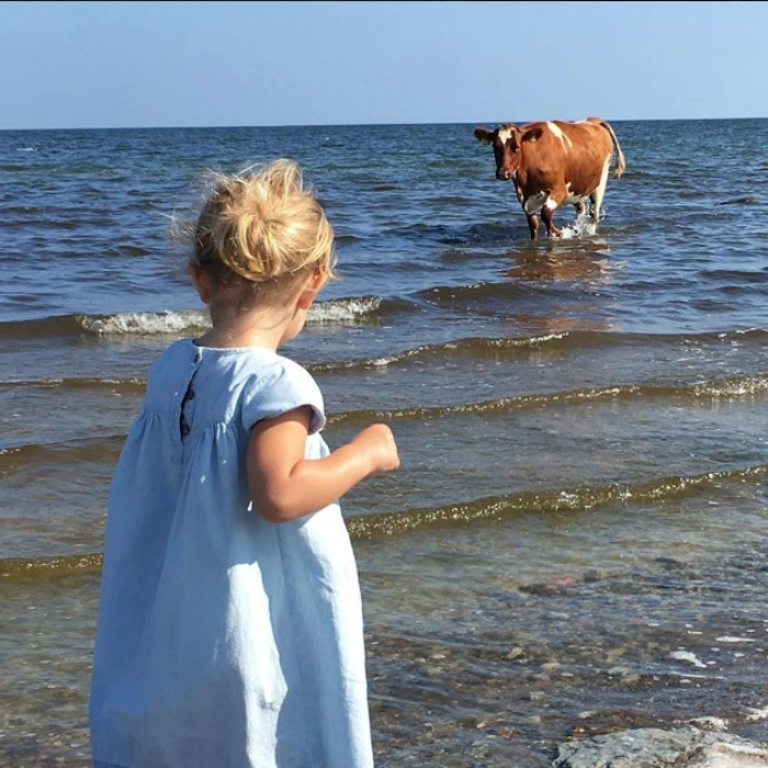 "While catching some R&R with her family on their annual summer getaway in Öland‬, Princess Madeleine of Sweden caught this moment between her daughter Princess Leonore and this ""unexpected visitor."" 