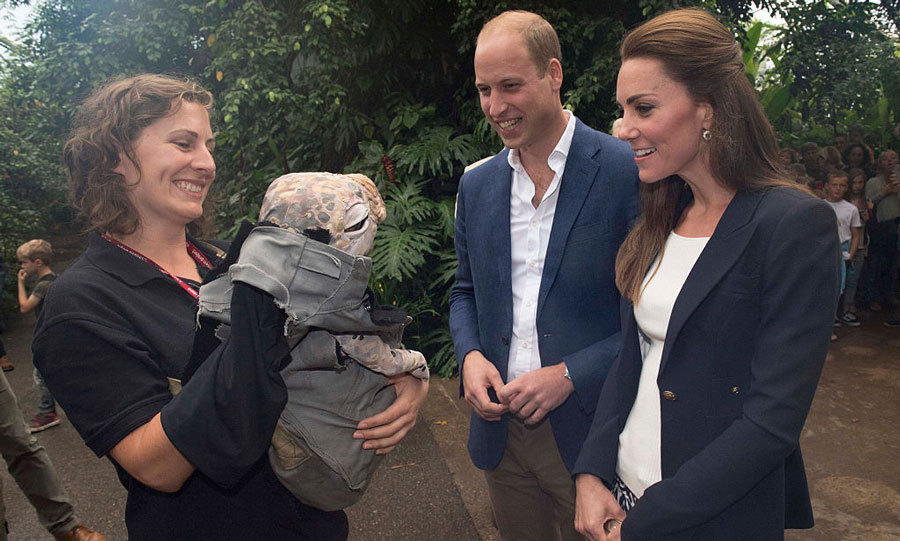 "A <i>dino</i>-mite meeting! William and Kate met one of the baby dinosaurs (a muttaburrasaurus dinosaur puppet) from the Eden Project's ""Dinosaur Uprising"" program.