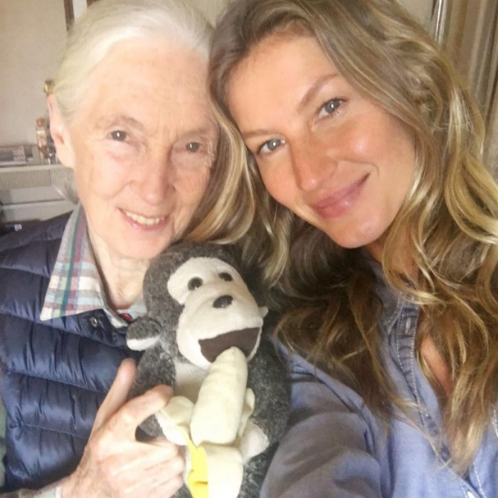 "<a href=""http://us.hellomagazine.com/tags/1/gisele-bundchen/""><strong>Gisele Bundchen</strong></a> and famed primatologist Dr. Jane Goodall kept it natural – of course! 