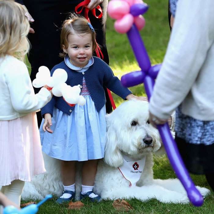 Charlotte made a furry friend, a therapy dog named Moose. The royal tot excitedly bounced on the canine's back.  