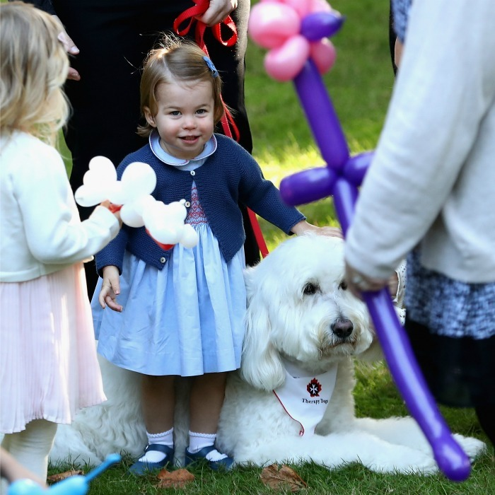 Charlotte was all smiles and all cute as she petted a dog named Moose during the children's party for military families at Government House in Victoria, Canada. 