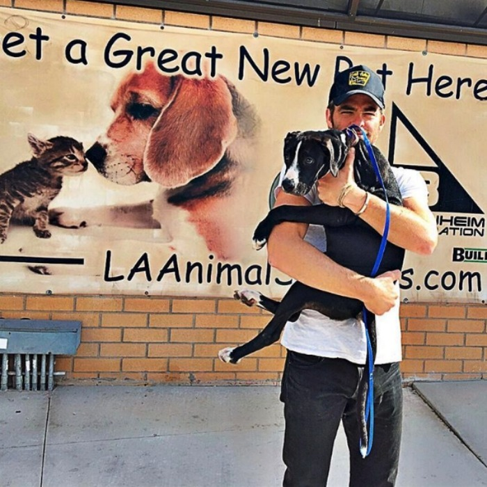 Chris Pine showed off his new best friend, who he proudly adopted from an animal shelter in L.A. 