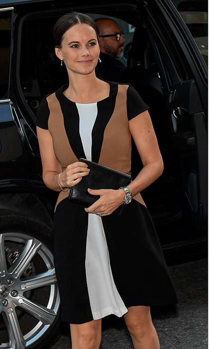 Prince Carl Philip of Sweden's wife Princess Sofia loves her country's brand H&M, but on this occasion, an outing to a Stockholm art museum exhibition in September 2016, she went for a previous season color block dress from Zara.