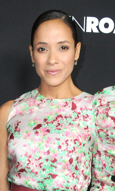 At the premiere of <I>Bleed for This</I> in Beverly Hills, <b>Dania Ramirez</B> went for full-on feminine with both her gown and her barely there makeup – a lovely glow with just a hint of pink.