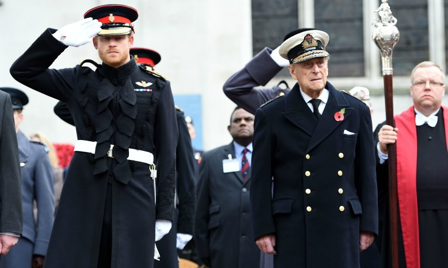 Prince Harry offered a salute of respect, while his grandfather Prince Philip stood at attention as they observed two minutes of silence at the Field of Remembrance at London's Westminster Abbey. 