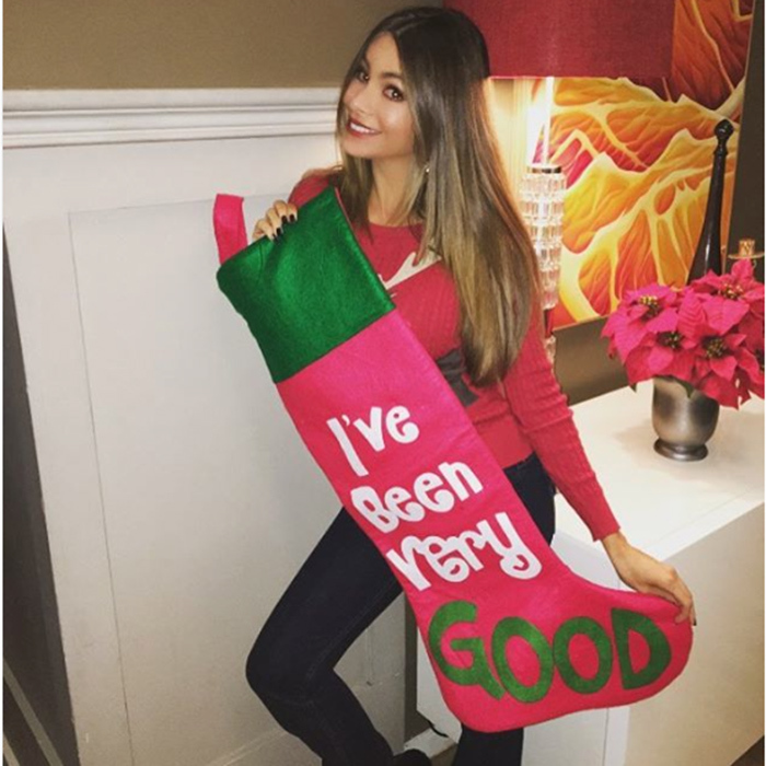 "<a href=""http://us.hellomagazine.com/tags/1/sofia-vergara/""><strong>Sofia Vergara</strong></a> has clearly been very good this year!