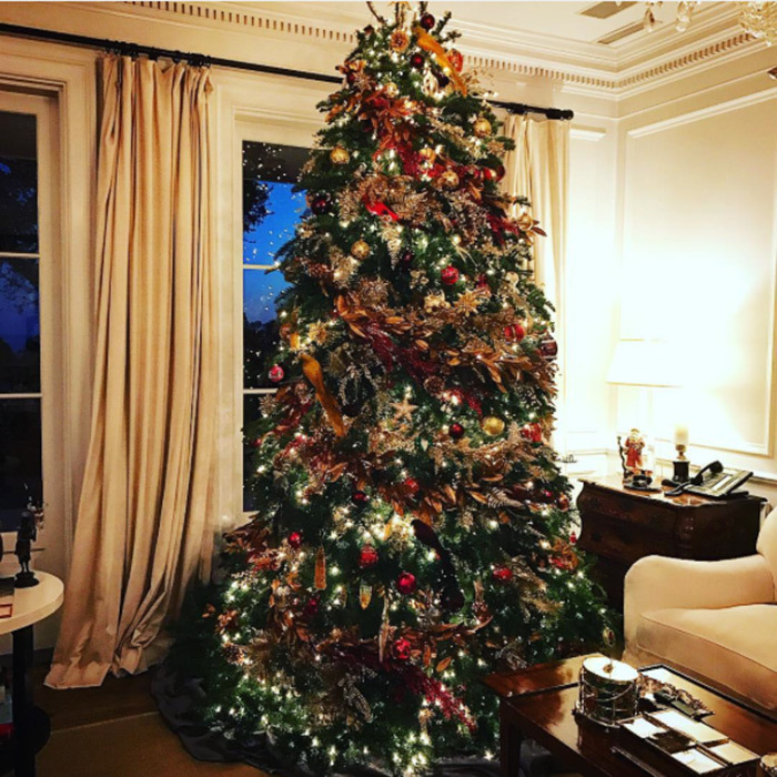 "<a href=""http://us.hellomagazine.com/tags/1/rob-loewe/""><strong>Rob Lowe</strong></a> took to Instagram to show off his beautifully decorated Christmas tree.