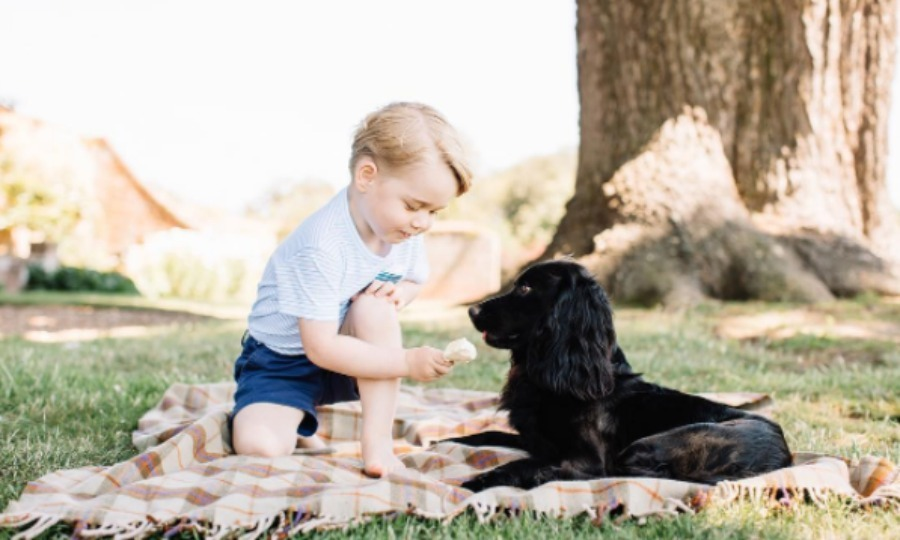 The future King was photographed with his best friend, and the family dog, Lupo in the garden of the home. 