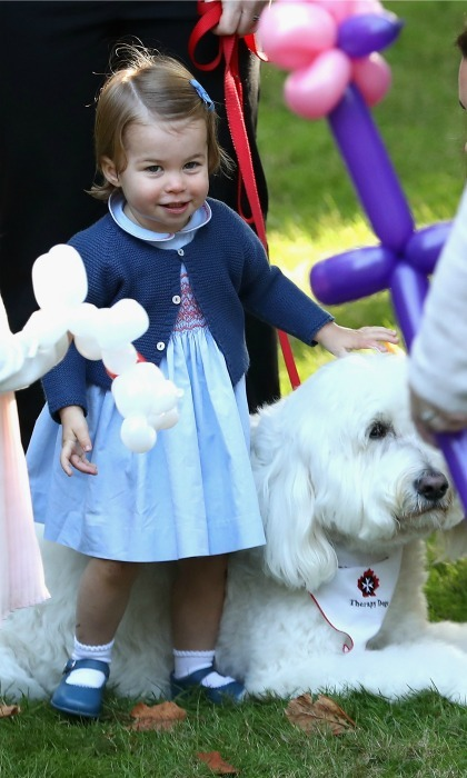 A true animal lover! Little Charlotte spent some quality time petting an on-hand therapy dog named Moose. The little Princess was also keen to play with a black and white rabbit. 