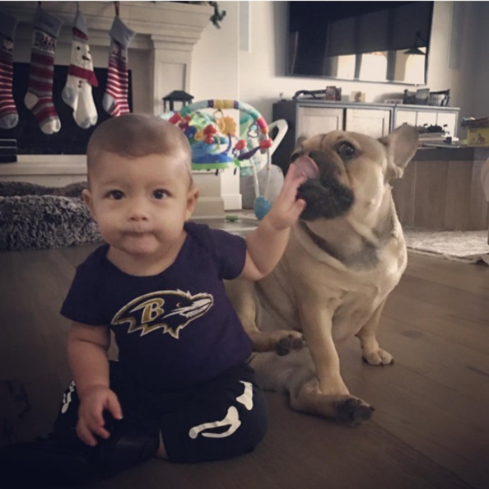 "Baltimore baby! Boomer showed off his hometown pride and his traditional ""Purple Friday"" attire as he wished the Baltimore Ravens good luck ahead of their big game. 