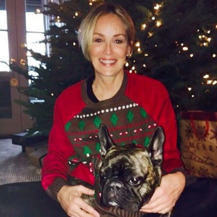 Sharon Stone and her dog Joe put on their ugly sweaters and snuggled up for Christmas photos. 