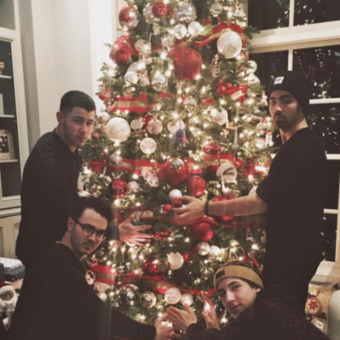 The Jonas Brothers got the band back together for Christmas. Kevin, Joe, Nick and Frankie spent Christmas in their home state of New Jersey and posed for an epic photo in front of the tree. 