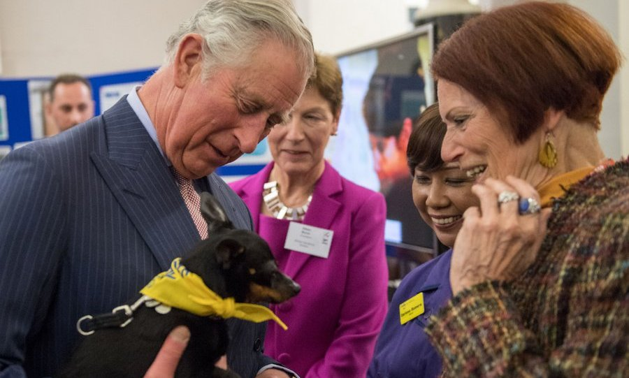 It looked like a case of puppy love as Prince Charles met  volunteer Diana Mukuma and her dog Little Doris during his visit to St Thomas' Hospital in London on March 6.