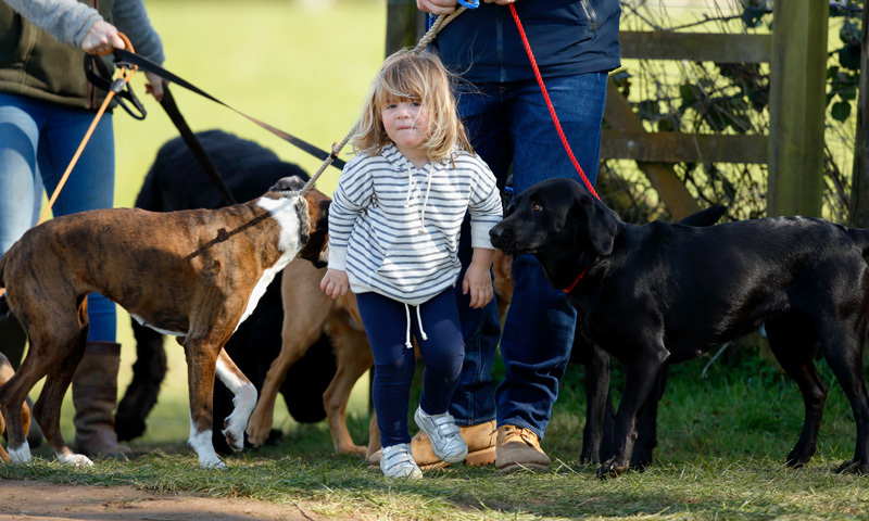 Horses are of course the focus at Gatcombe, but little Mia seemed to be having just as much fun with the dogs.