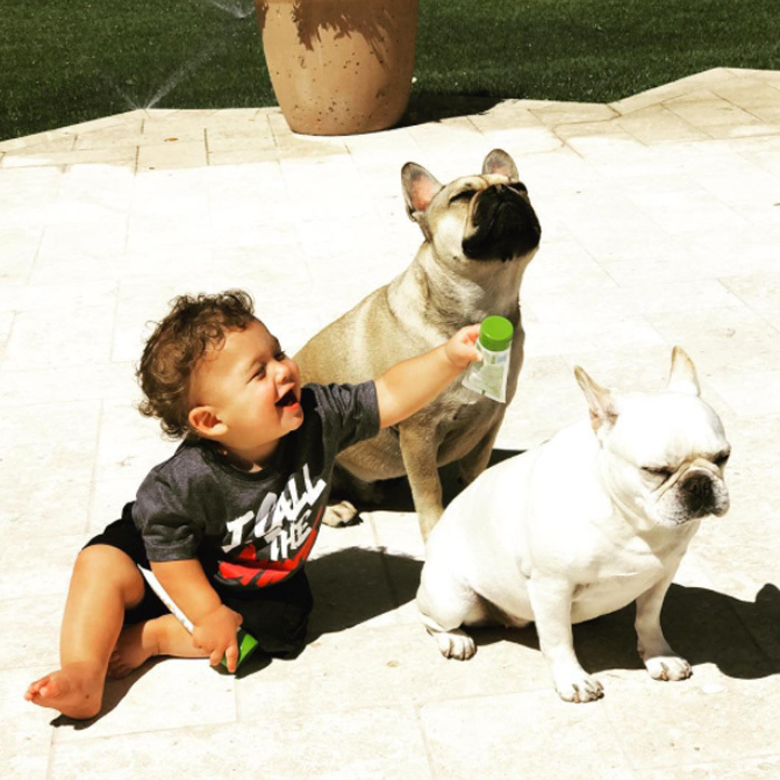 Just a boy and his best friends! Boomer shared his sunscreen with Juno and Legend during a sunny day out in June 2017.