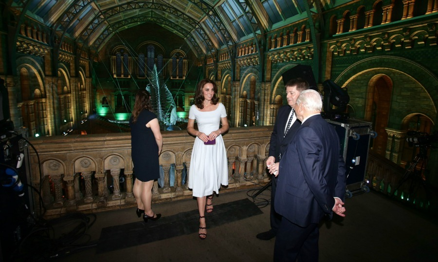 Kate had a stylish night out at the museum in a Cinderella blue fit and flare dress by Preen. The Duchess let her newly cut - and curled - hair down during her engagement at London's Natural History Museum.