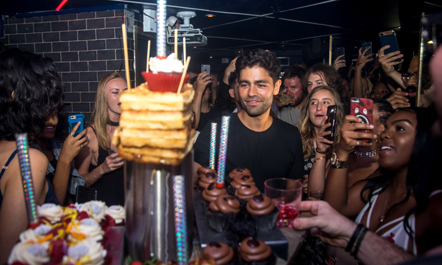 Adrian Grenier, who turned 41 on July 10, celebrated his birthday at New York's Hotel Chantelle on July 16. The actor was joined by close friends at the party, where his band The Skins performed.