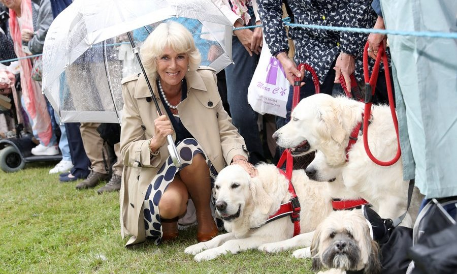 Meanwhile, Camilla, Duchess of Cornwall met some furry new pals as she joined husband Prince Charles at the Sandringham Flower Show.