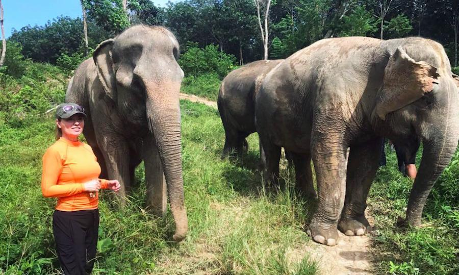 "Following the release of the music video for her hit single Life's About to Get Good, Shania Twain escaped to the Phuket Elephant Sanctuary to ""recharge"" before her new album!