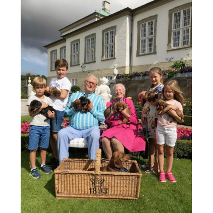 The Danish royals had a Sunday funday with their family's eight new additions. Queen Margrethe II of Denmark and her husband Prince Henrik were joined by four of their grandchildren — Prince Christian, 11, Princess Isabella, ten, Prince Vincet, six, and Princess Josephine, six — as they played with the recently born pups on the grounds of Fredensborg Palace on August 27.