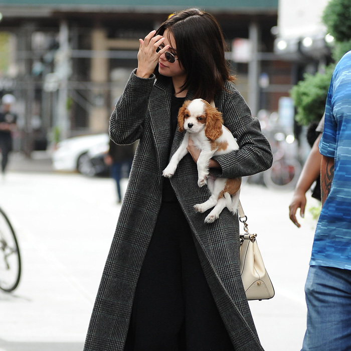 Selena Gomez had an adorable companion as she walked the streets of NYC. The actress, who is in town filming an unnamed Woody Allen film, held on to her little pup Charlie while out and about.