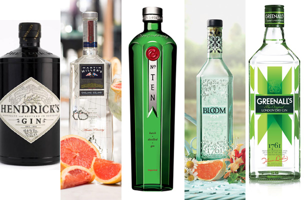 top-gins-