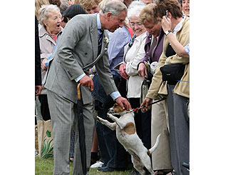 New canine pal for Charles at laughter-filled flower show